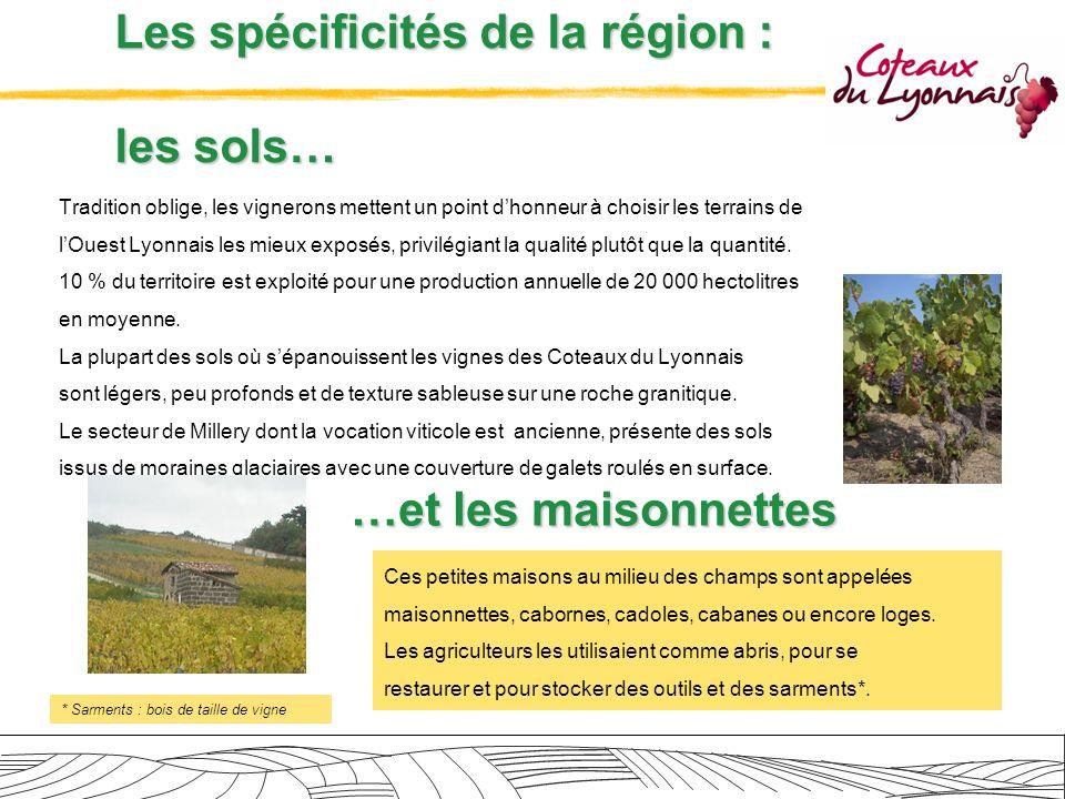 Les spécificités de la région : les sols…