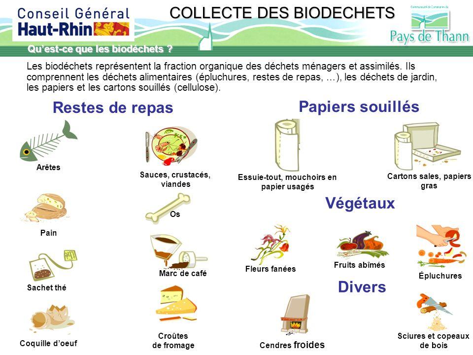 Restes de repas Papiers souillés Végétaux Divers