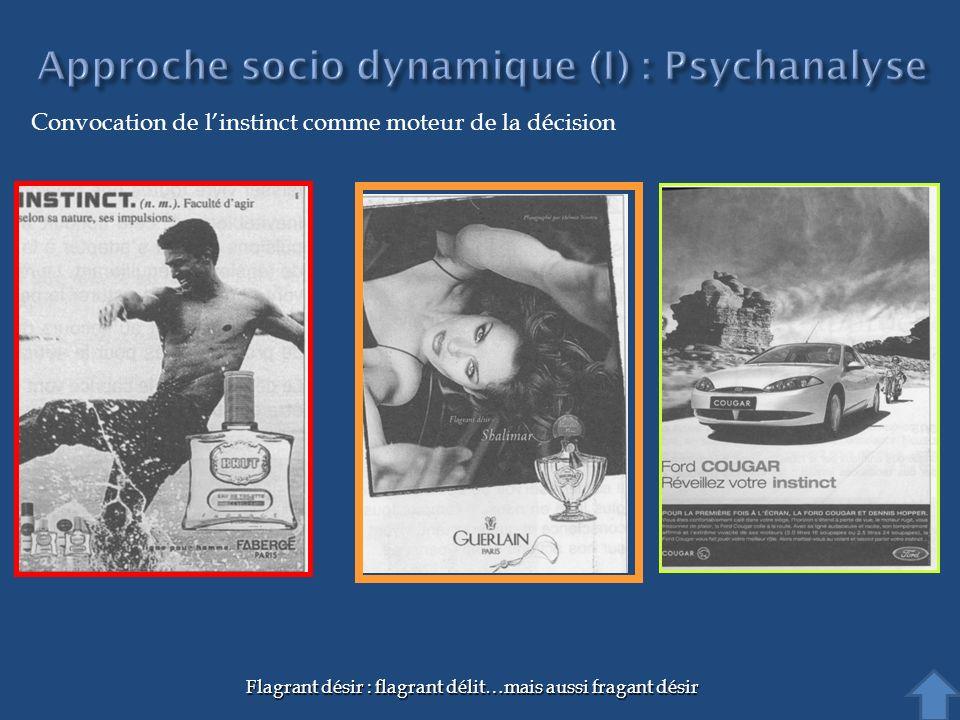 Approche socio dynamique (I) : Psychanalyse