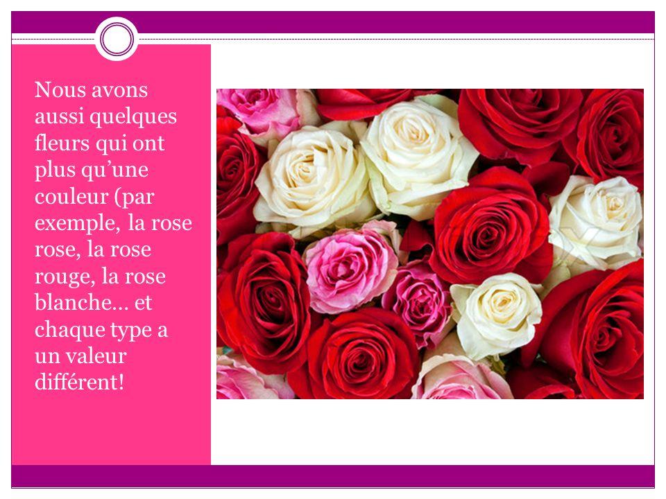 Nous avons aussi quelques fleurs qui ont plus qu'une couleur (par exemple, la rose rose, la rose rouge, la rose blanche… et chaque type a un valeur différent!