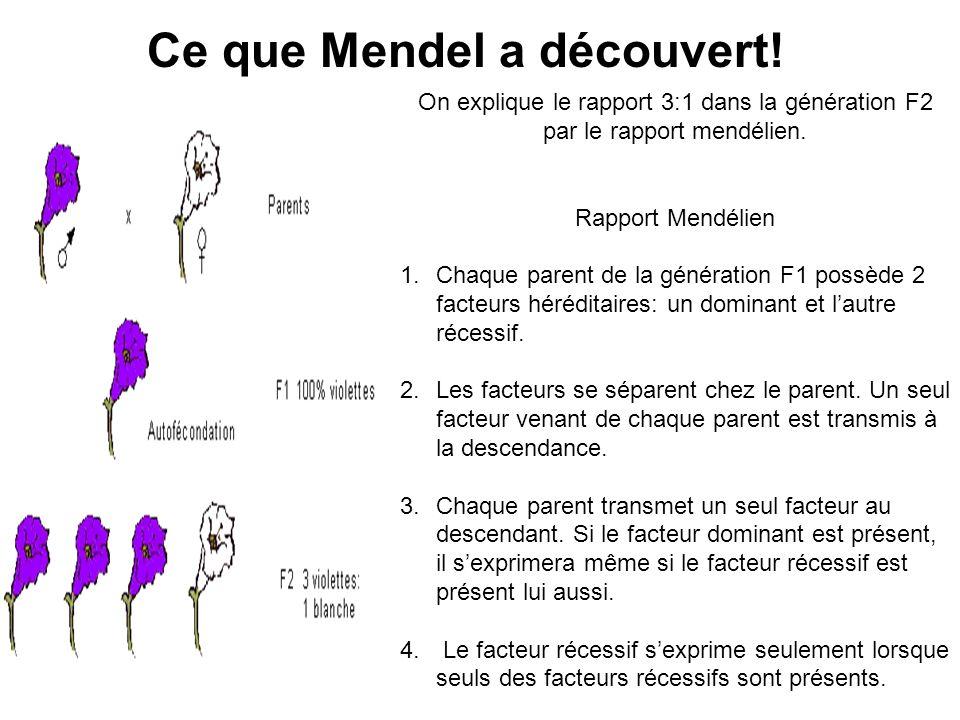 Ce que Mendel a découvert!
