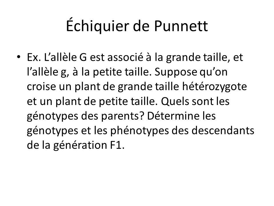 Échiquier de Punnett