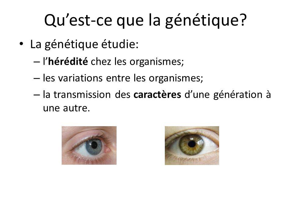 Qu'est-ce que la génétique