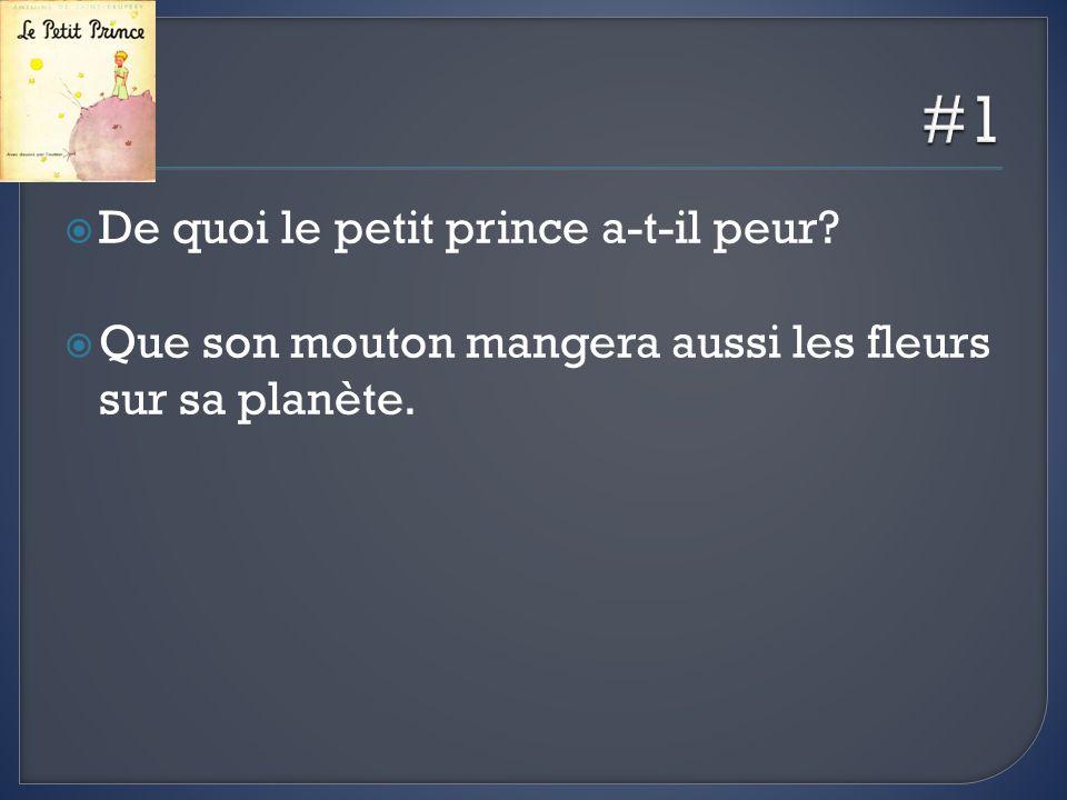 #1 De quoi le petit prince a-t-il peur