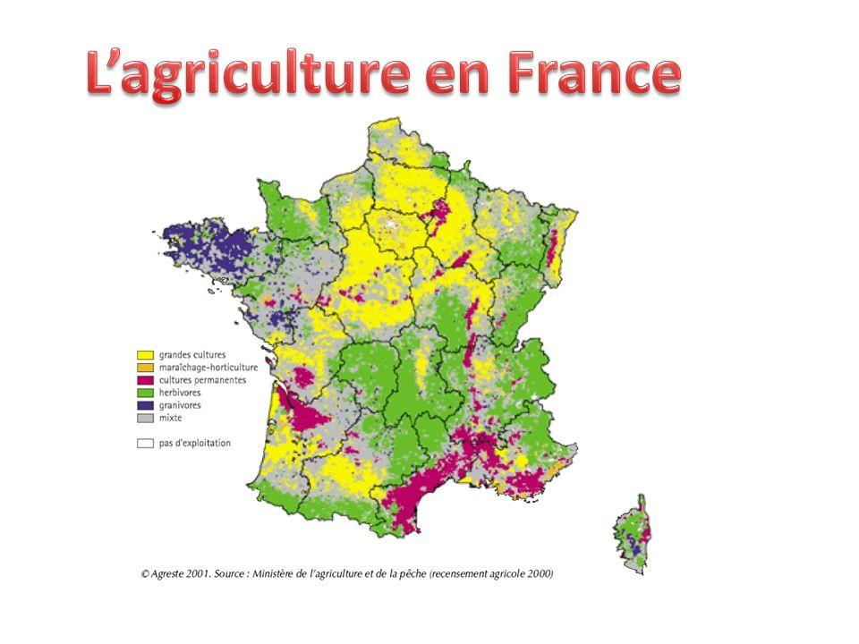 L'agriculture en France