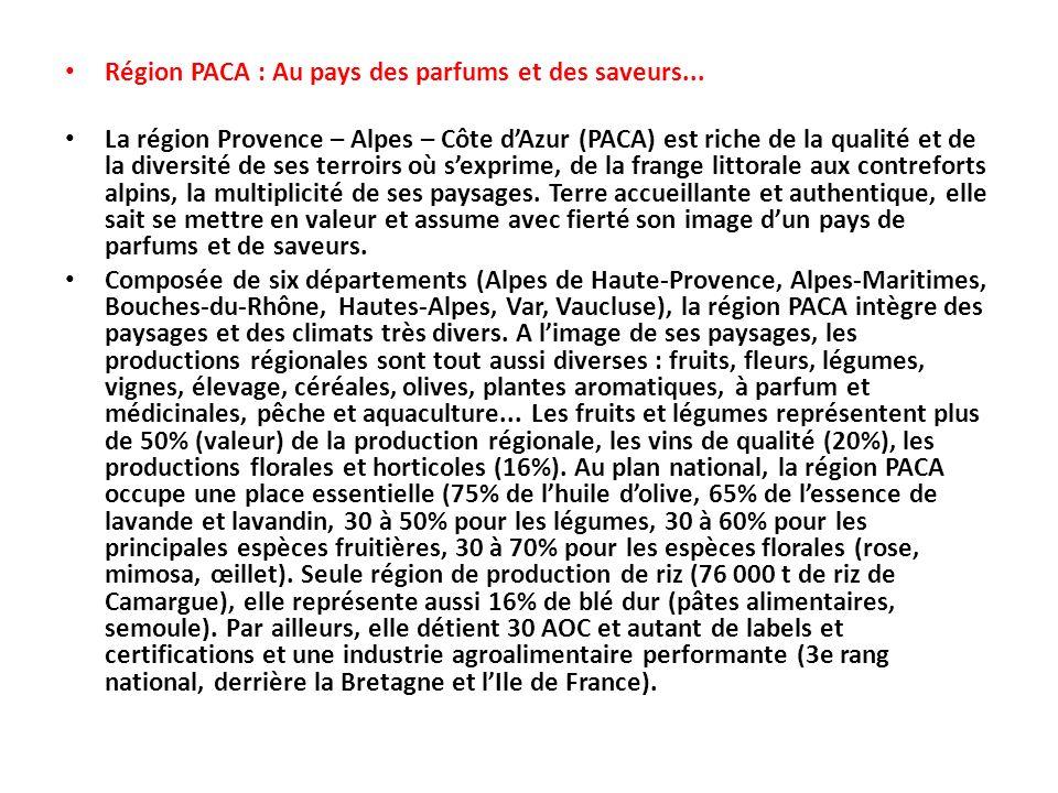 Région PACA : Au pays des parfums et des saveurs...