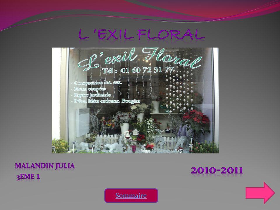 L 'EXIL FLORAL MALANDIN JULIA 3eme 1 2010-2011 Sommaire