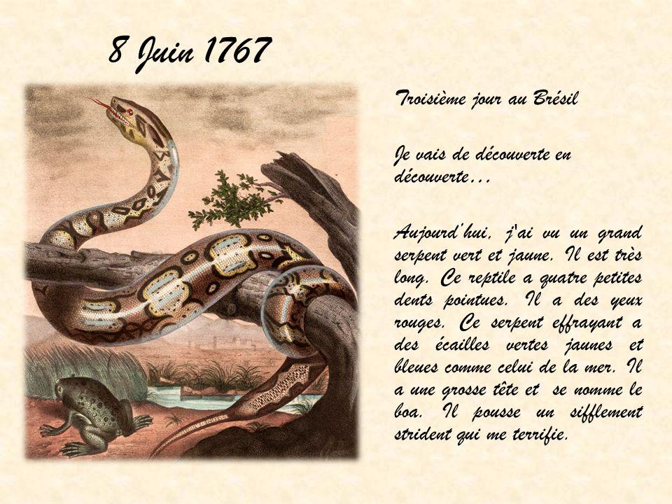 8 Juin 1767 Troisième jour au Brésil