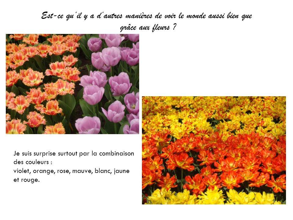 Est-ce qu'il y a d'autres manières de voir le monde aussi bien que grâce aux fleurs
