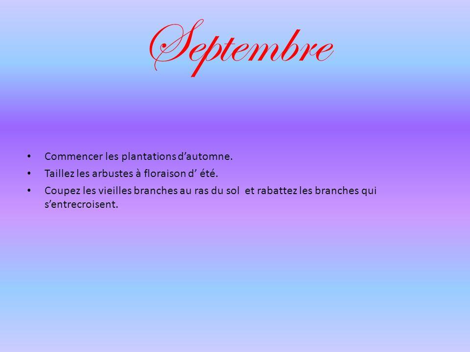 Septembre Commencer les plantations d'automne.