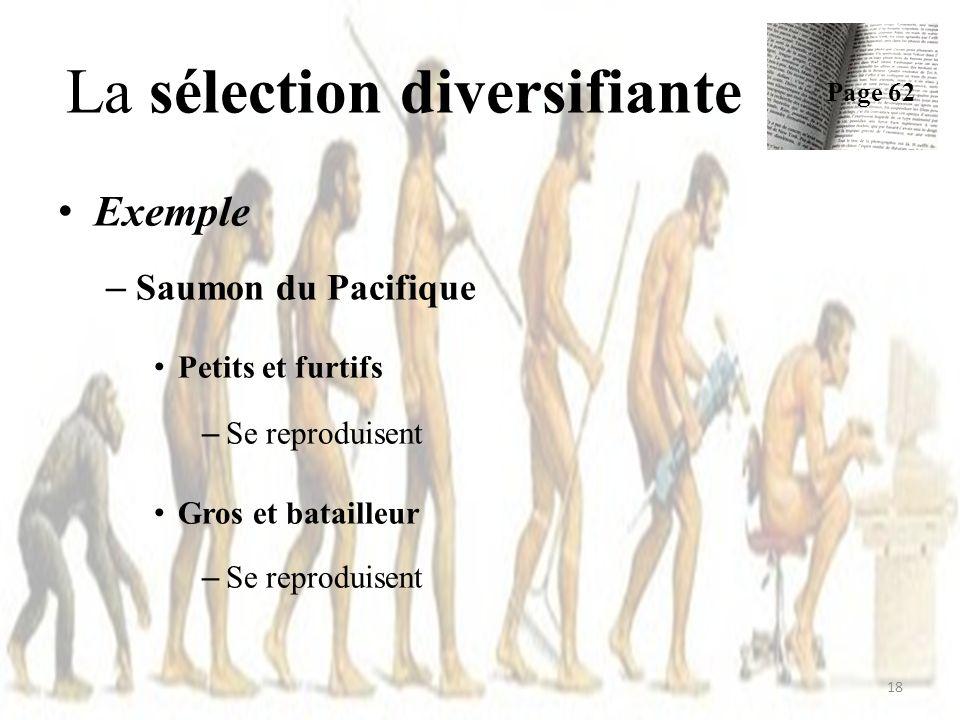 La sélection diversifiante