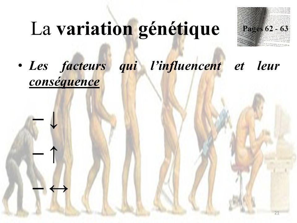La variation génétique