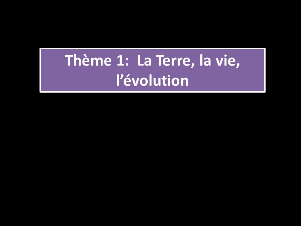 Thème 1: La Terre, la vie, l'évolution