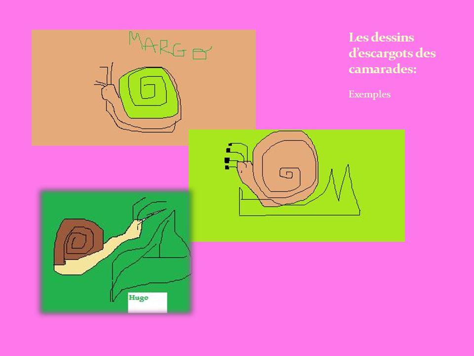 Les dessins d'escargots des camarades: