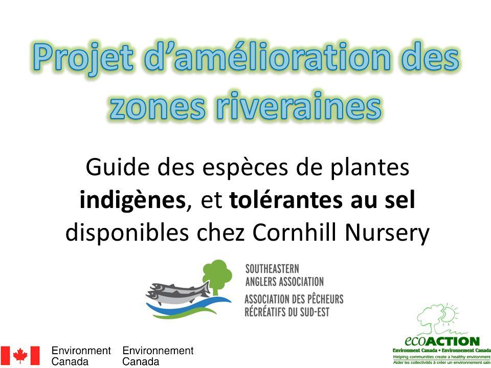 Projet d'amélioration des zones riveraines