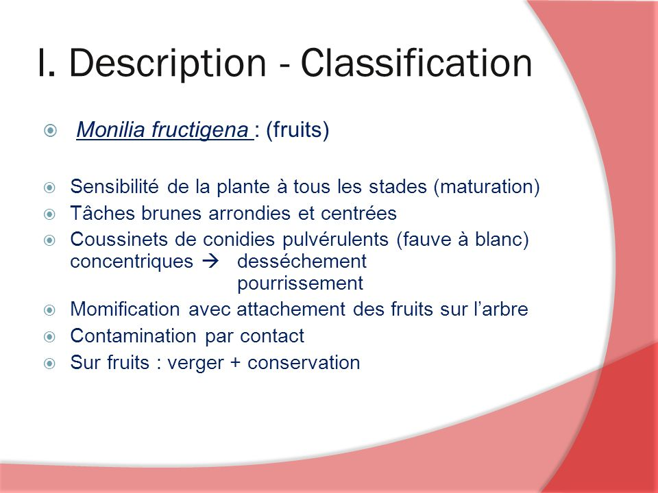 I. Description - Classification