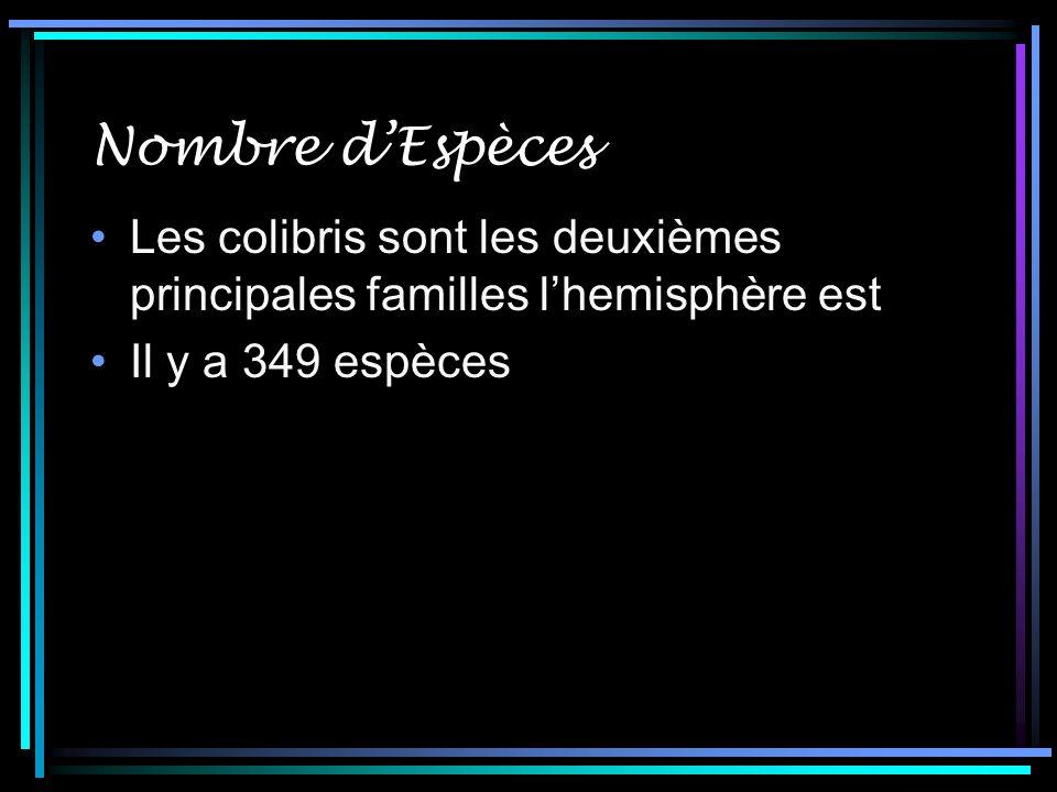 Nombre d'Espèces Les colibris sont les deuxièmes principales familles l'hemisphère est.