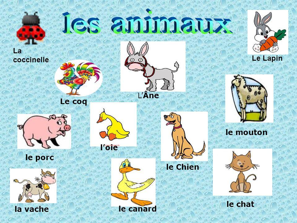 les animaux La coccinelle Le Lapin Le coq L'Âne le mouton l'oie