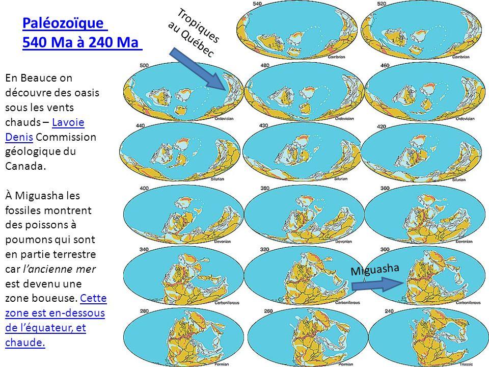 Paléozoïque 540 Ma à 240 Ma Tropiques au Québec
