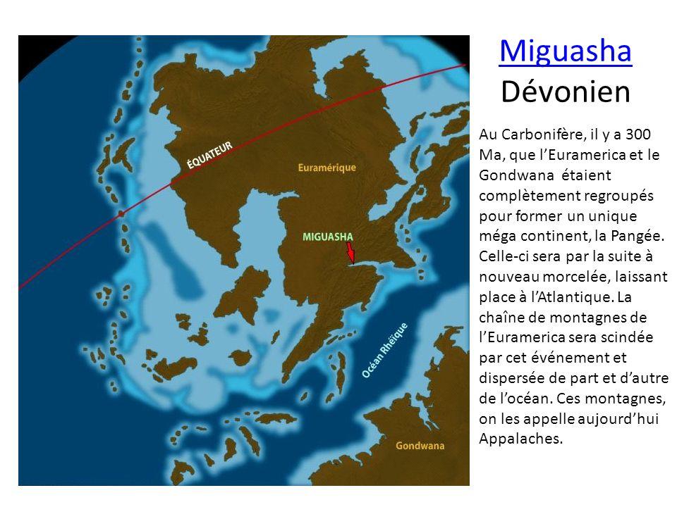 Miguasha Dévonien