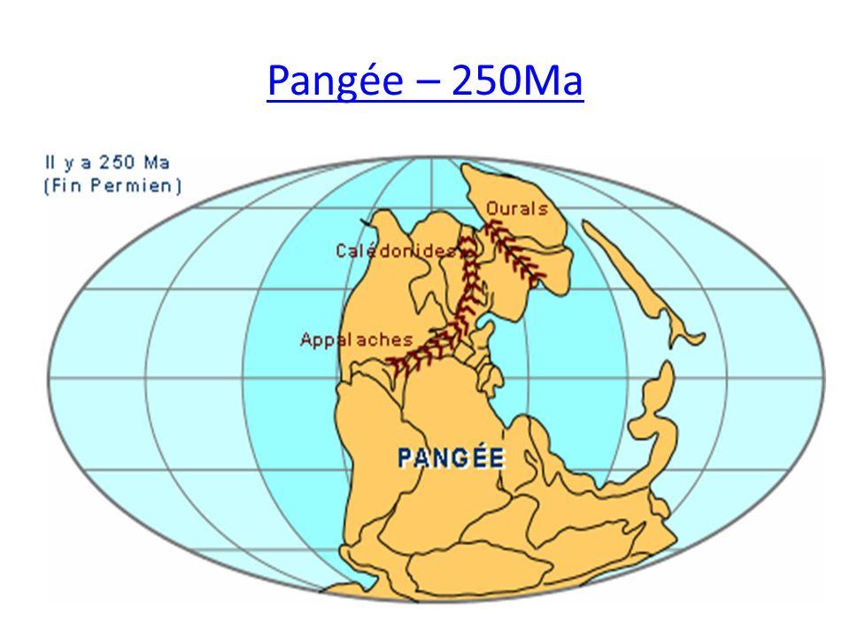 Pangée – 250Ma