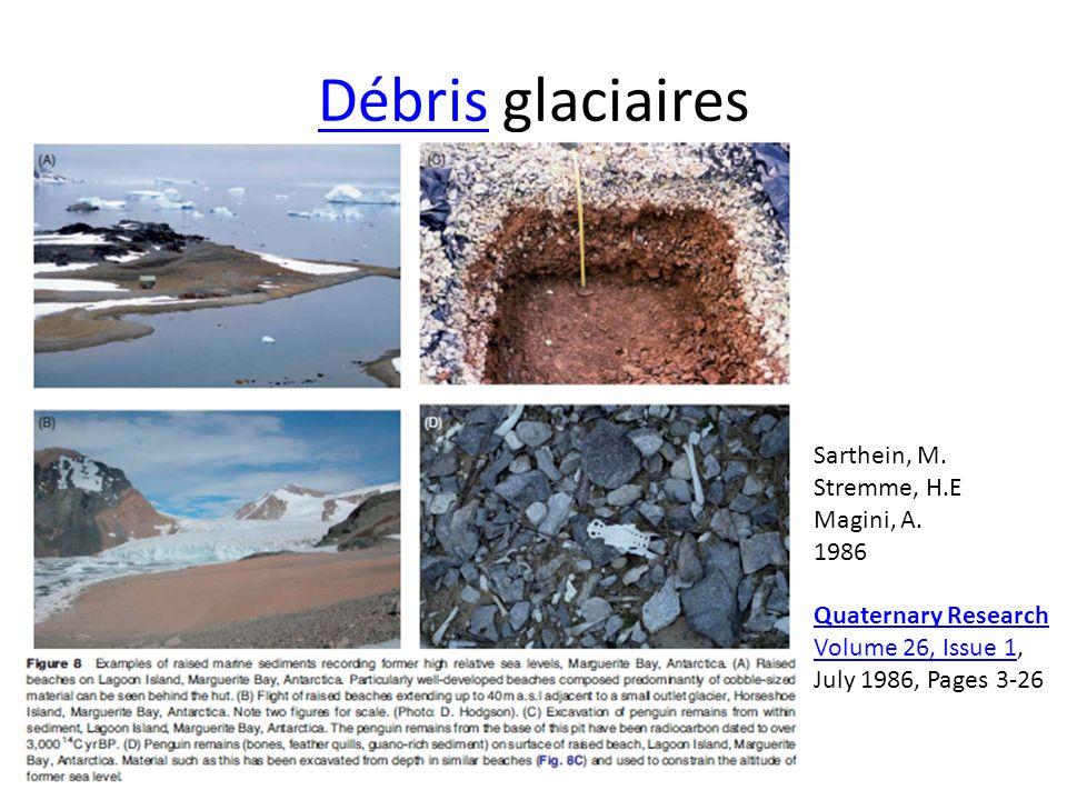 Débris glaciaires Sarthein, M. Stremme, H.E. Magini, A.