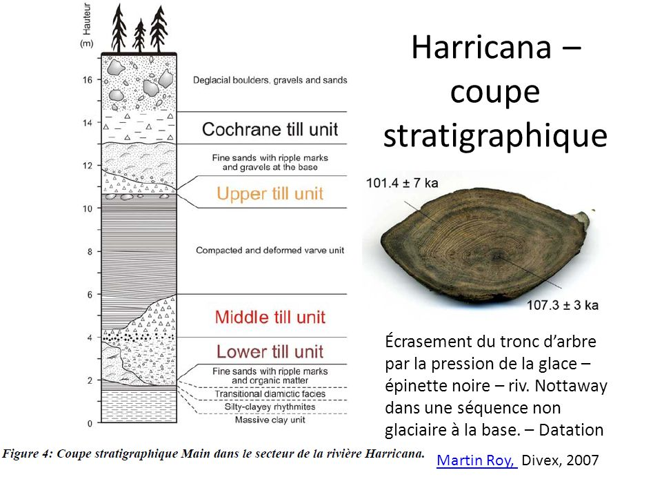 Harricana – coupe stratigraphique