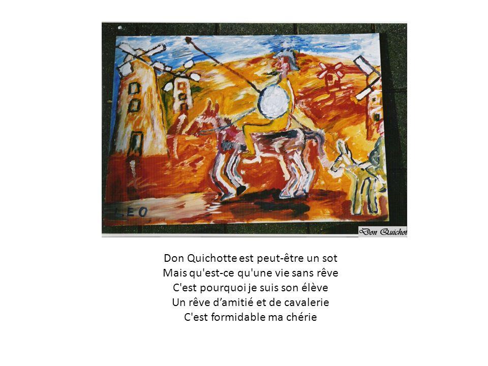 Don Quichotte est peut-être un sot