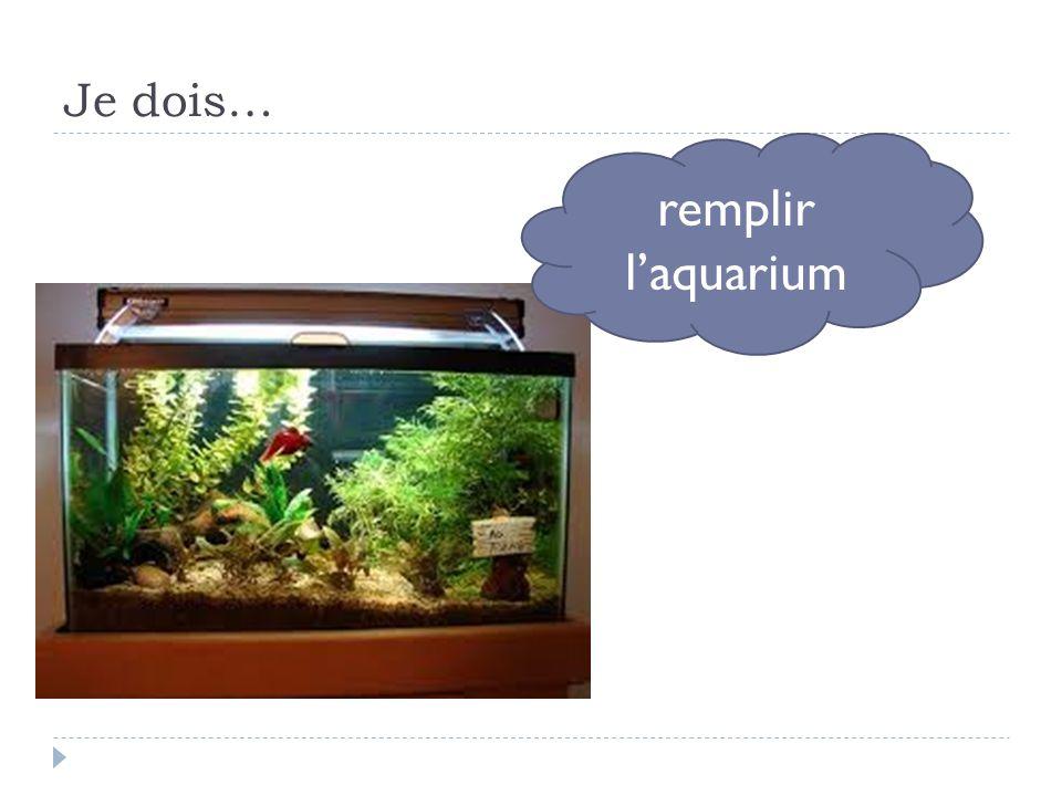 Je dois… remplir l'aquarium
