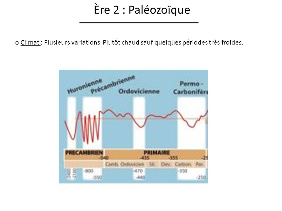 Ère 2 : Paléozoïque Climat : Plusieurs variations.