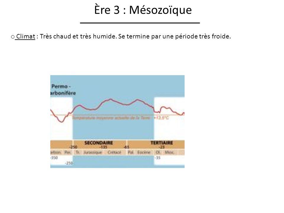 Ère 3 : Mésozoïque Climat : Très chaud et très humide. Se termine par une période très froide.