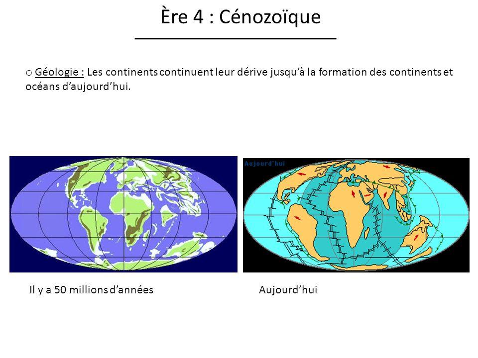 Ère 4 : Cénozoïque Géologie : Les continents continuent leur dérive jusqu'à la formation des continents et océans d'aujourd'hui.