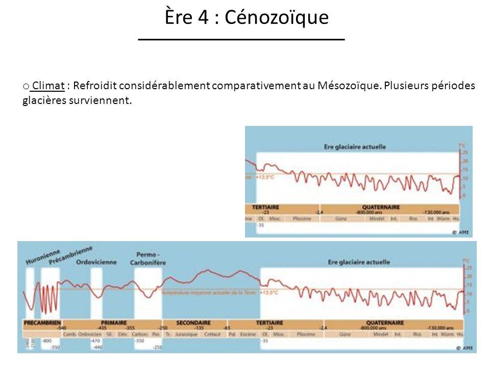 Ère 4 : Cénozoïque Climat : Refroidit considérablement comparativement au Mésozoïque.