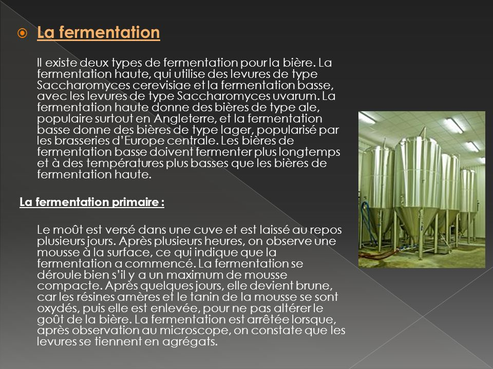 La fermentation