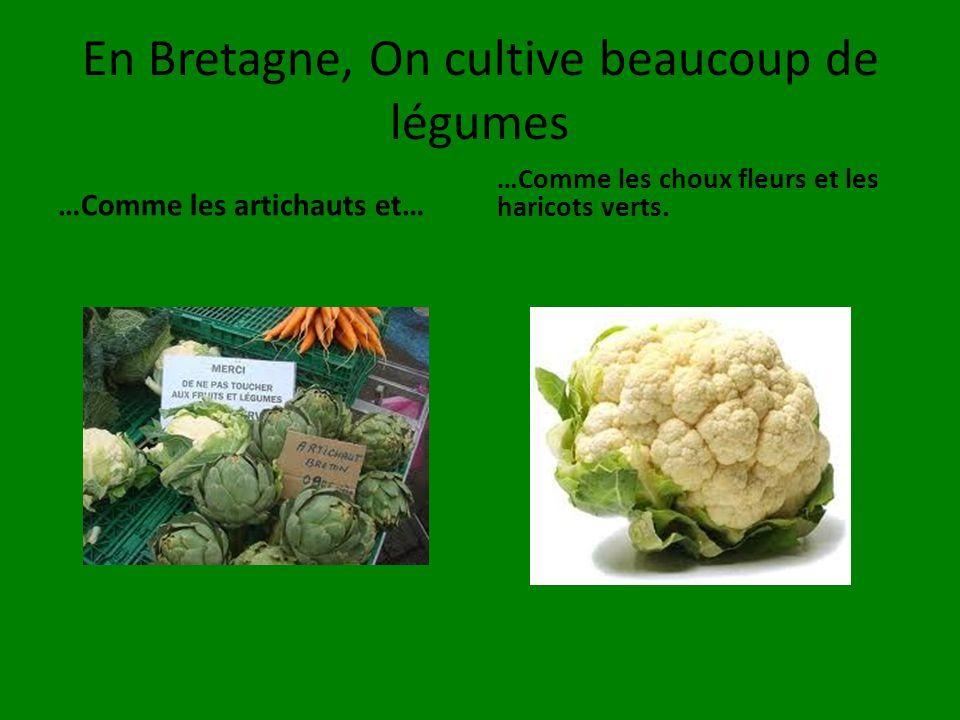 En Bretagne, On cultive beaucoup de légumes