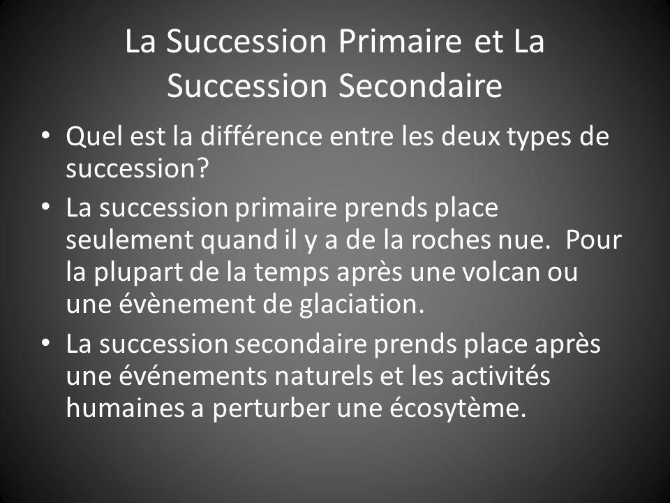 La Succession Primaire et La Succession Secondaire