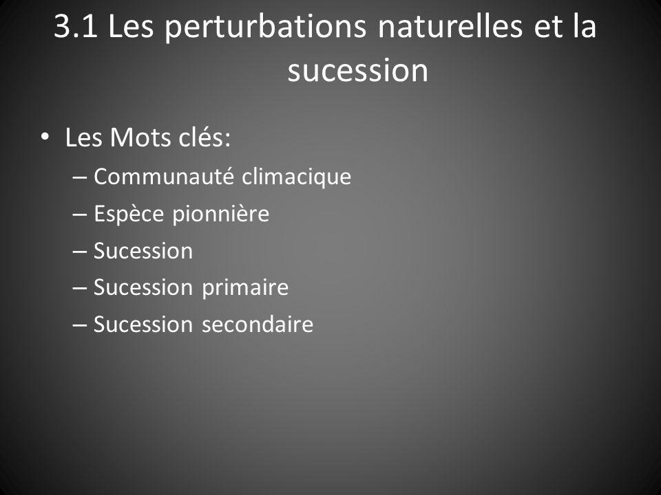 3.1 Les perturbations naturelles et la sucession