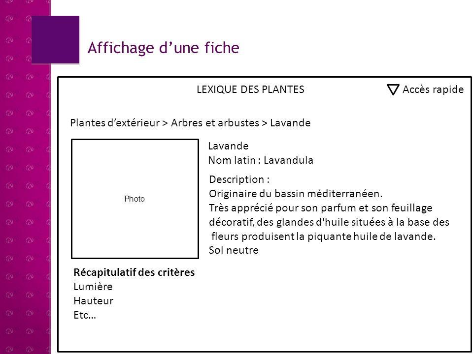 Affichage d'une fiche LEXIQUE DES PLANTES Accès rapide