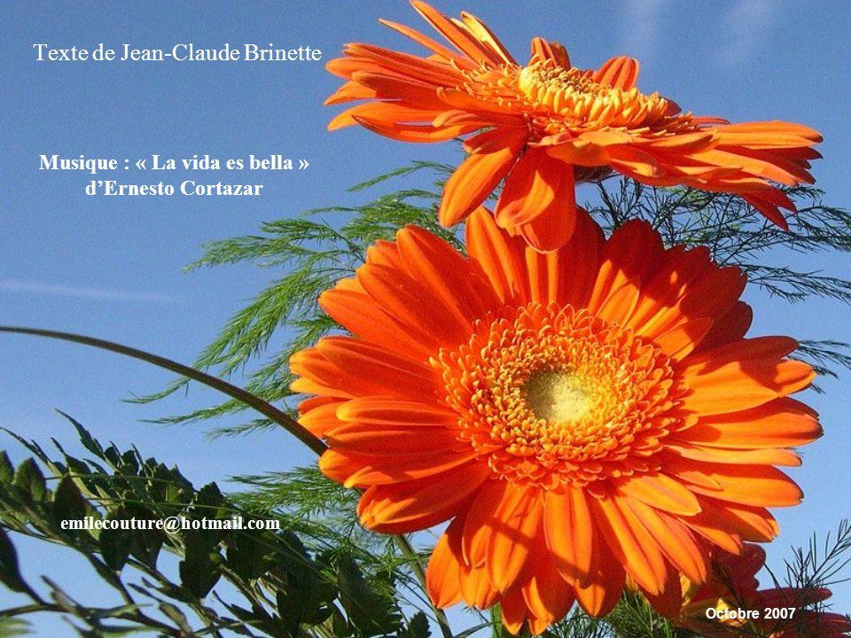 Texte de Jean-Claude Brinette