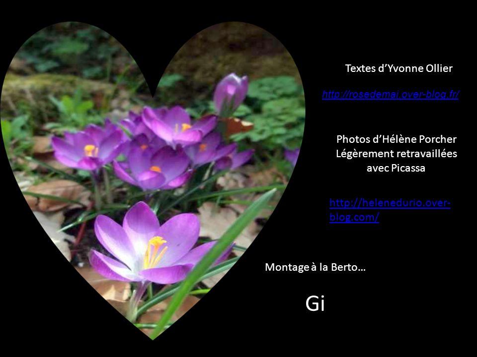 Gi Textes d'Yvonne Ollier Photos d'Hélène Porcher