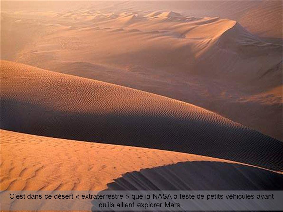 C est dans ce désert « extraterrestre » que la NASA a testé de petits véhicules avant qu ils aillent explorer Mars..