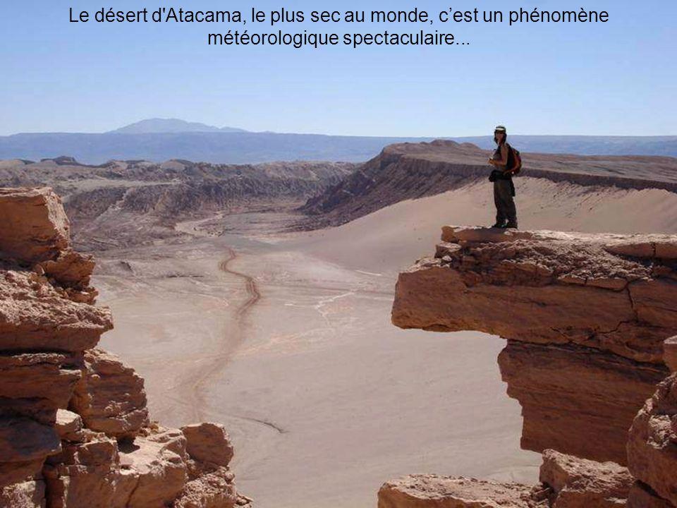 Le désert d Atacama, le plus sec au monde, c'est un phénomène météorologique spectaculaire...