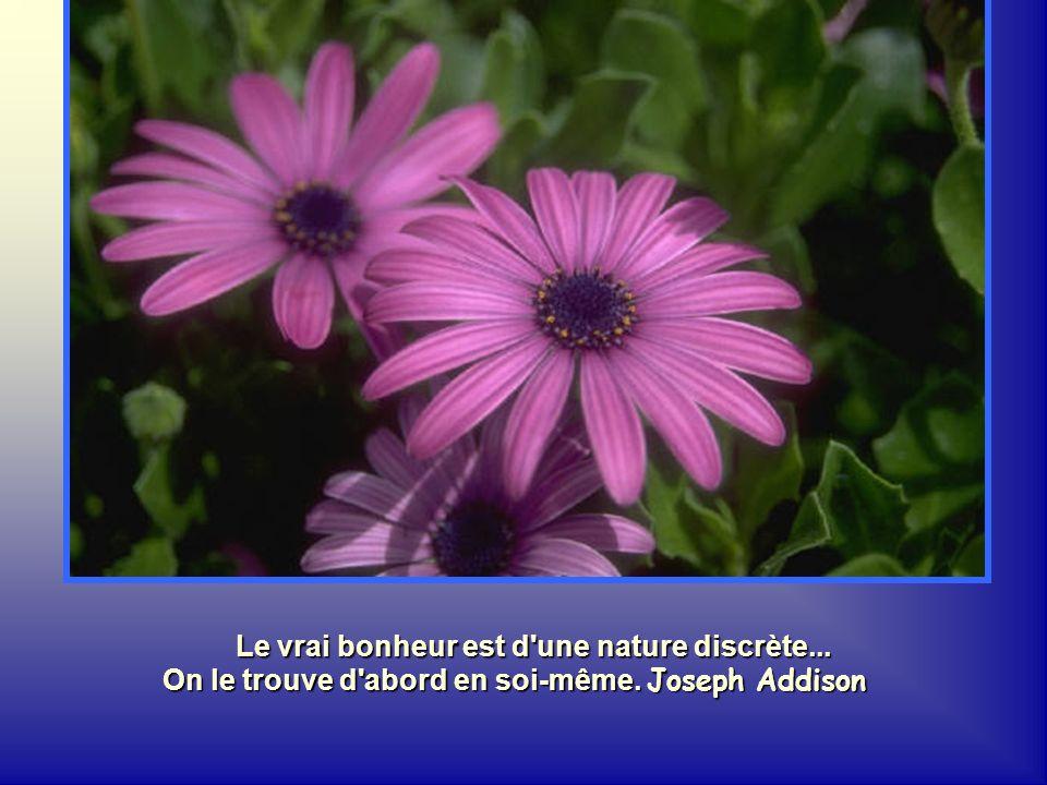 Le vrai bonheur est d une nature discrète...