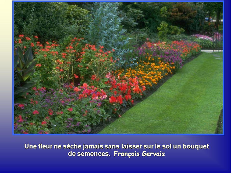 Une fleur ne sèche jamais sans laisser sur le sol un bouquet