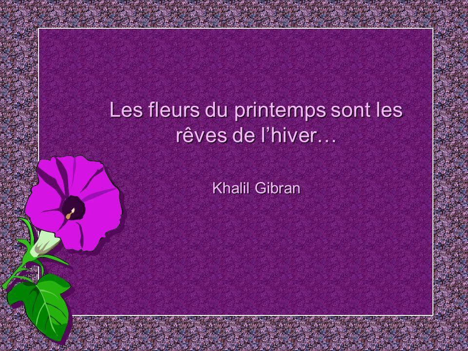 Les fleurs du printemps sont les rêves de l'hiver… Khalil Gibran