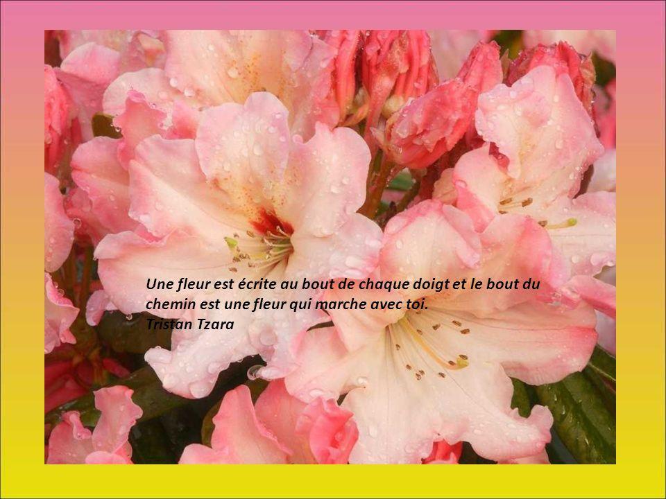 Une fleur est écrite au bout de chaque doigt et le bout du