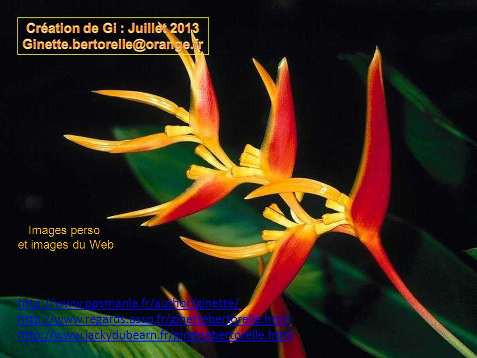 Images perso et images du Web. http://www.ppsmania.fr/author/ginette/ http://www.regards.asso.fr/ginettebertorelle.html.