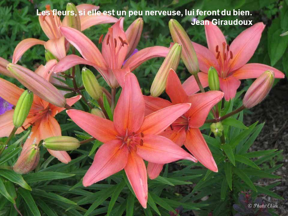 Les fleurs, si elle est un peu nerveuse, lui feront du bien.