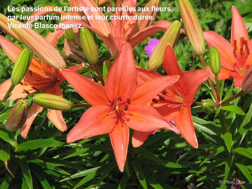 Les passions de l artiste sont pareilles aux fleurs, par leur parfum intense et leur courte durée.