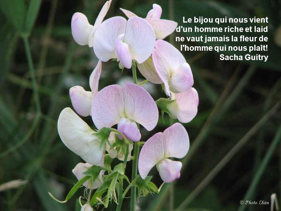 Le bijou qui nous vient d un homme riche et laid ne vaut jamais la fleur de l homme qui nous plaît!